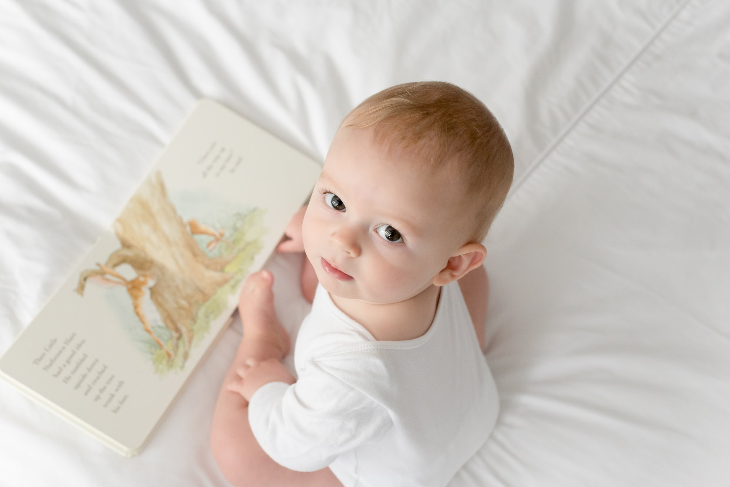 Toddler reading book in photo shoot