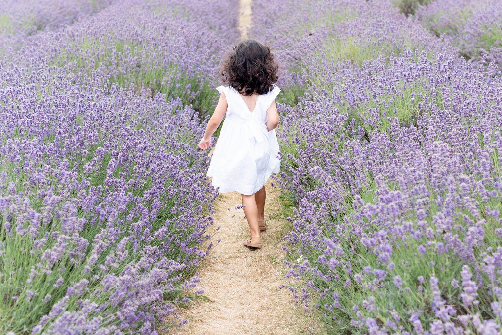 walking in mayfield lavender surrey