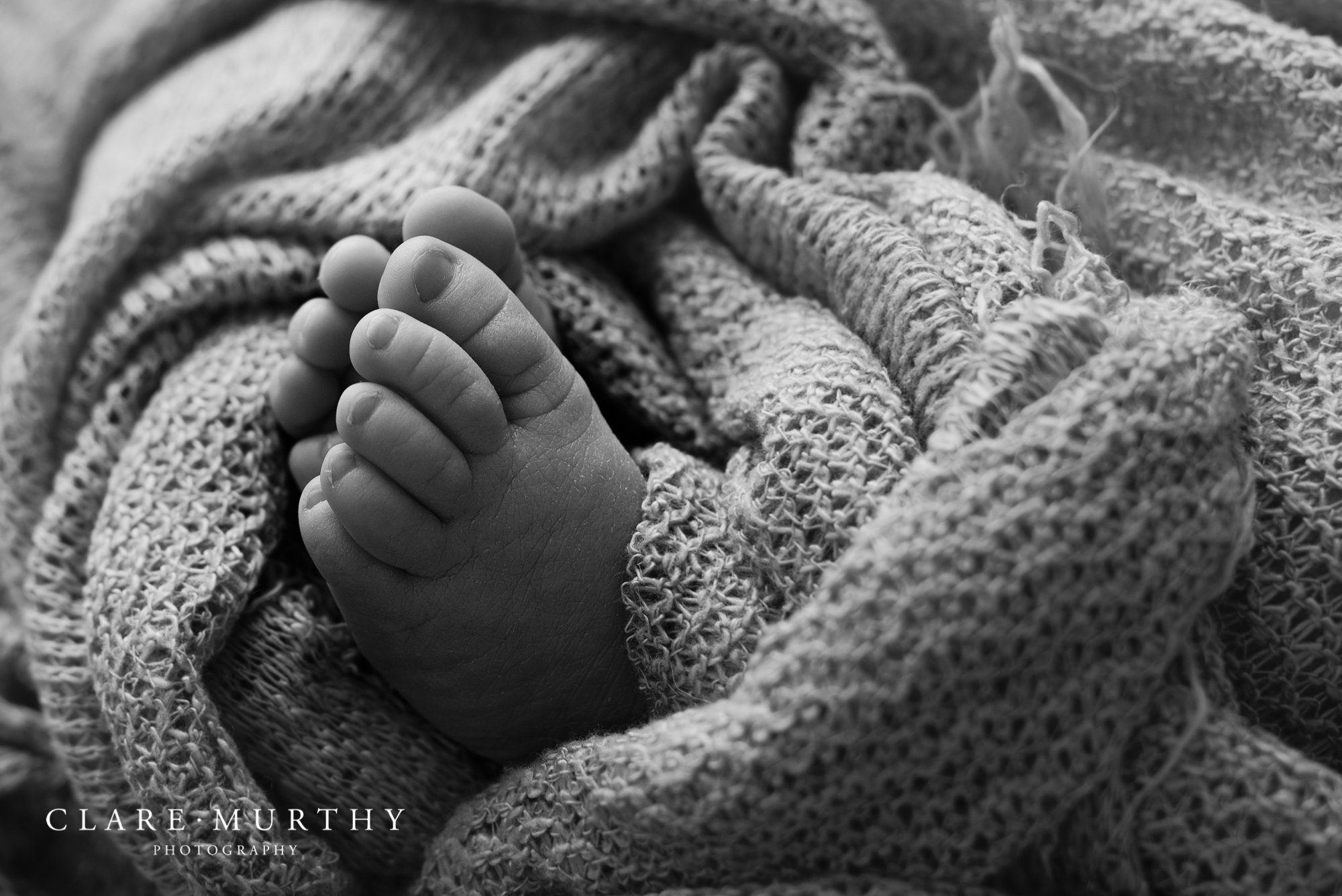 black and white photo of baby toes from newborn photo shoot